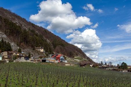 2013 La Neuveville - Ch. du Tirage - Photo Chs Ballif